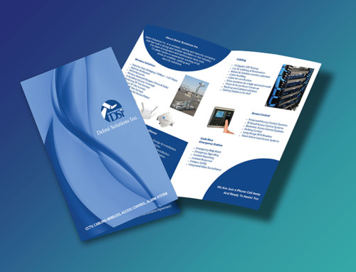 Delmi Solutions Brochure Design
